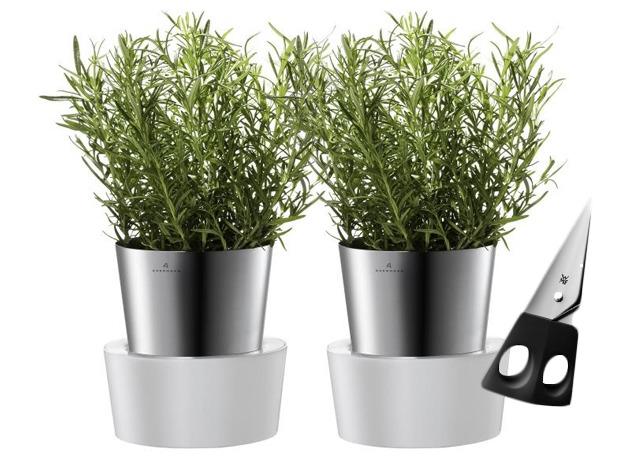 Dwie Doniczki Herbs Na Zioła Auerhahn Nożyczki Wmf