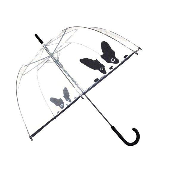 Długi parasol przezroczysty kopuła, pies